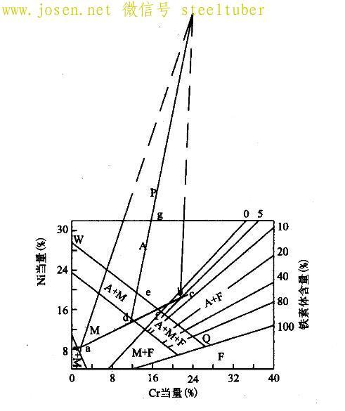 图1舍夫勒组织.jpg