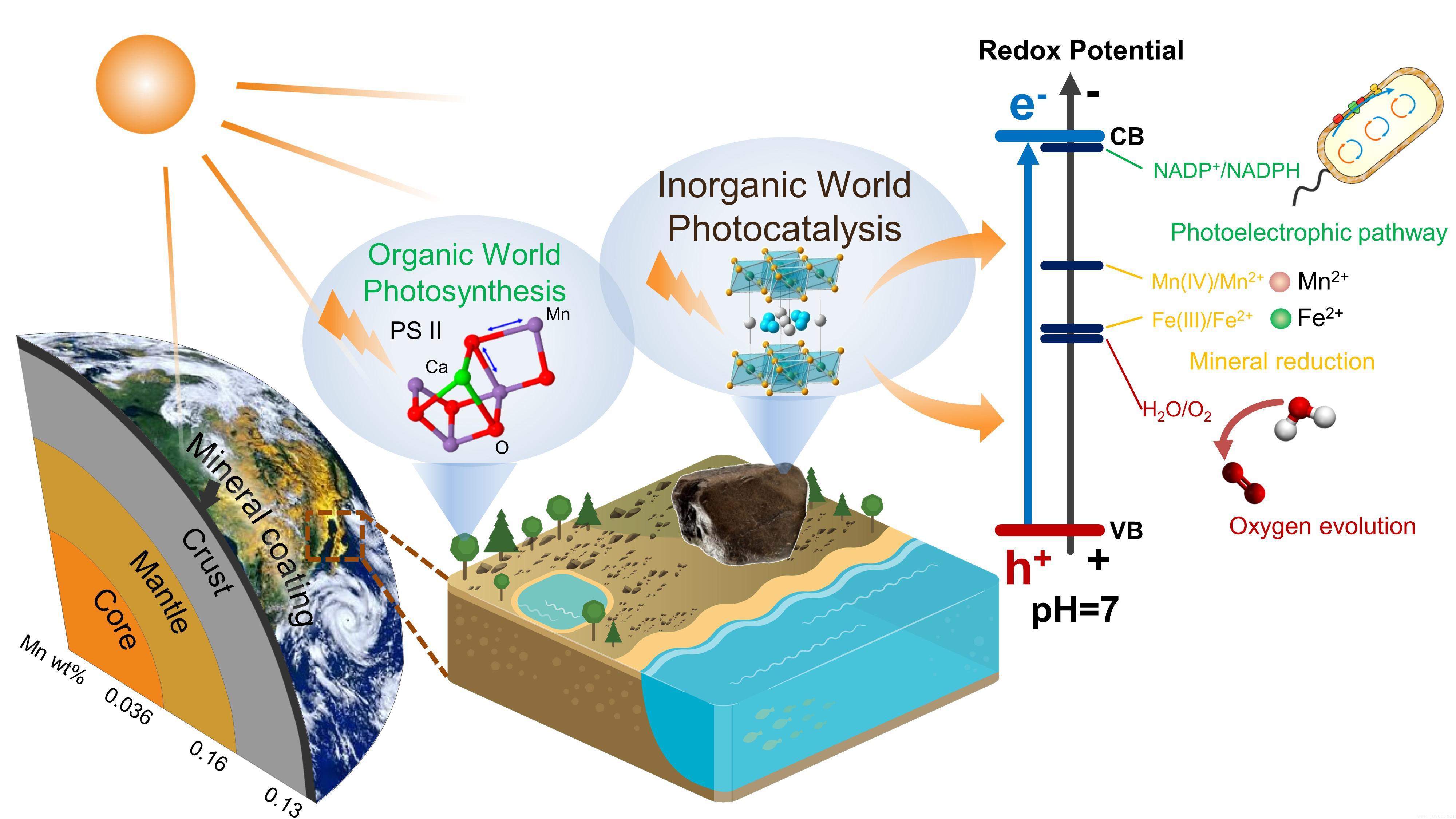 """北大率先发现矿物光合作用 证实""""矿物膜""""光化学反应"""